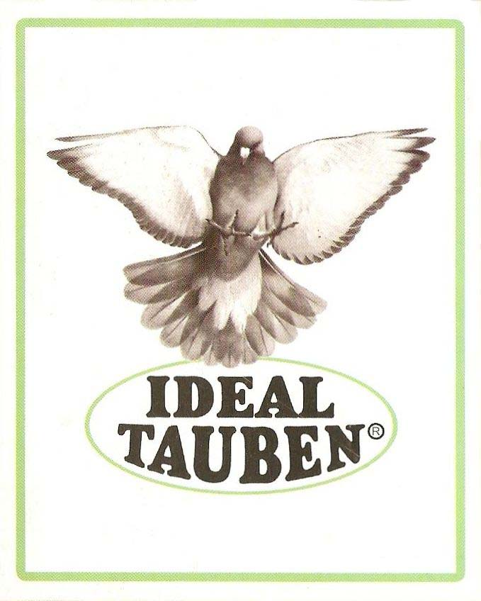 Ideal Tauben